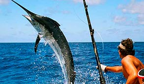 actividades-villas-en-acapulco-pesca